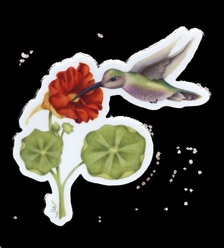 Hummingbird's Dinner Sticker