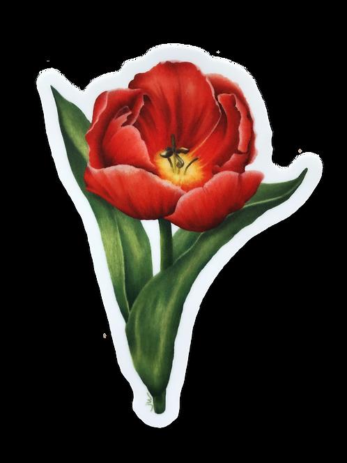 Red Tulip Sticker