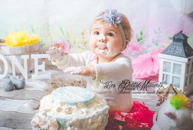 smake the cake
