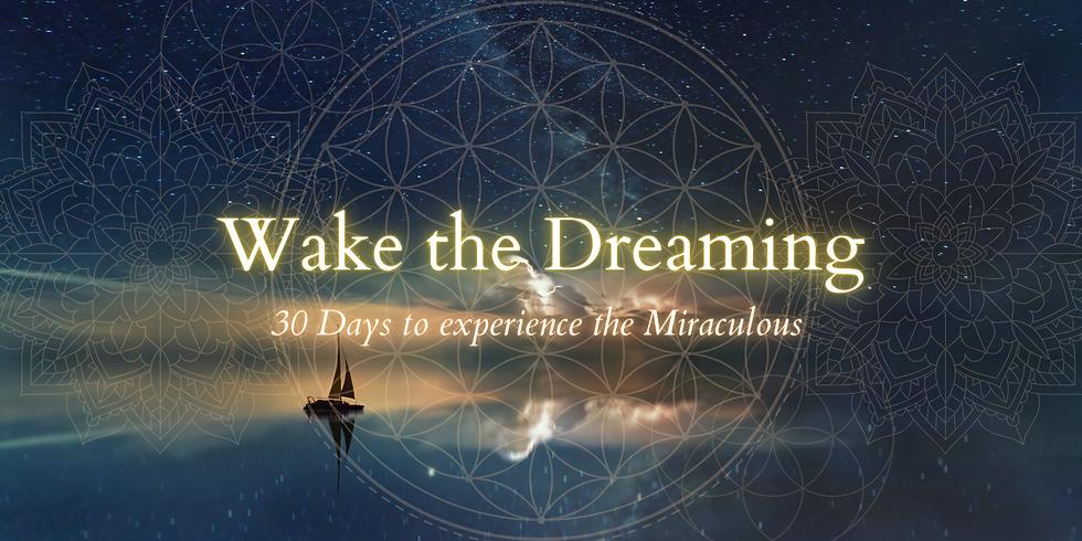 Wake The Dreaming 14