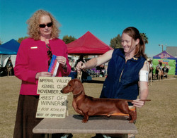 Lincoln Imperial Valley Kennel Club 2015