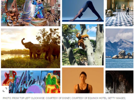 100+ Fun Things to Do at Home Right Now, From Virtual Tours to Animals Cams and More