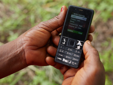 Ignitia-2SCALE Partnership Empowers Over a Thousand Smallholder Farmers In Northern Nigeria