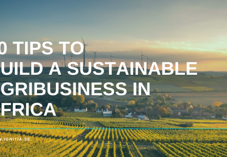 10 Tips to Build a Sustainable Agribusiness in Africa
