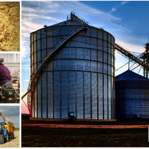 Top 10 Agribusiness Companies in Nigeria