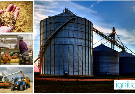 Top 10 Agribusiness Companies in Nigeria