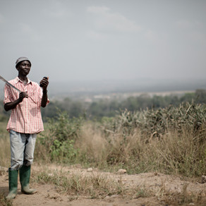 2% for 80X More; How Thousands of Smallholder Farmers are Climbing Above The Poverty Line with iska.