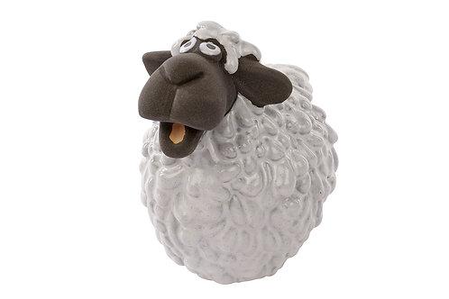 Short Sheep