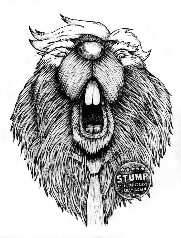 Beaver J Stump