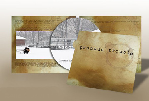 Pronoun Trouble