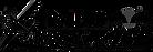 red-bull-air-race-logo-Black-grey.png