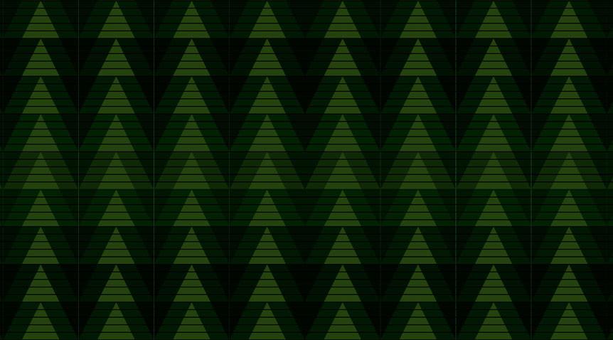 NWFF41_background.jpg