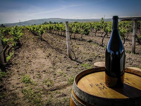 Será Chihuahua sede de la 4ta. Edición del Concurso Mundial del Vino