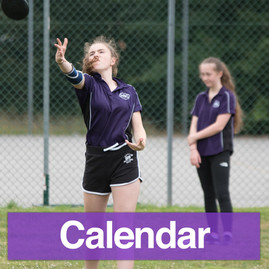 Newland-homepage-Calendar.jpg