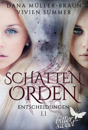 Schattenorden 1 von Vivien Summer und Dana Müller-Braun