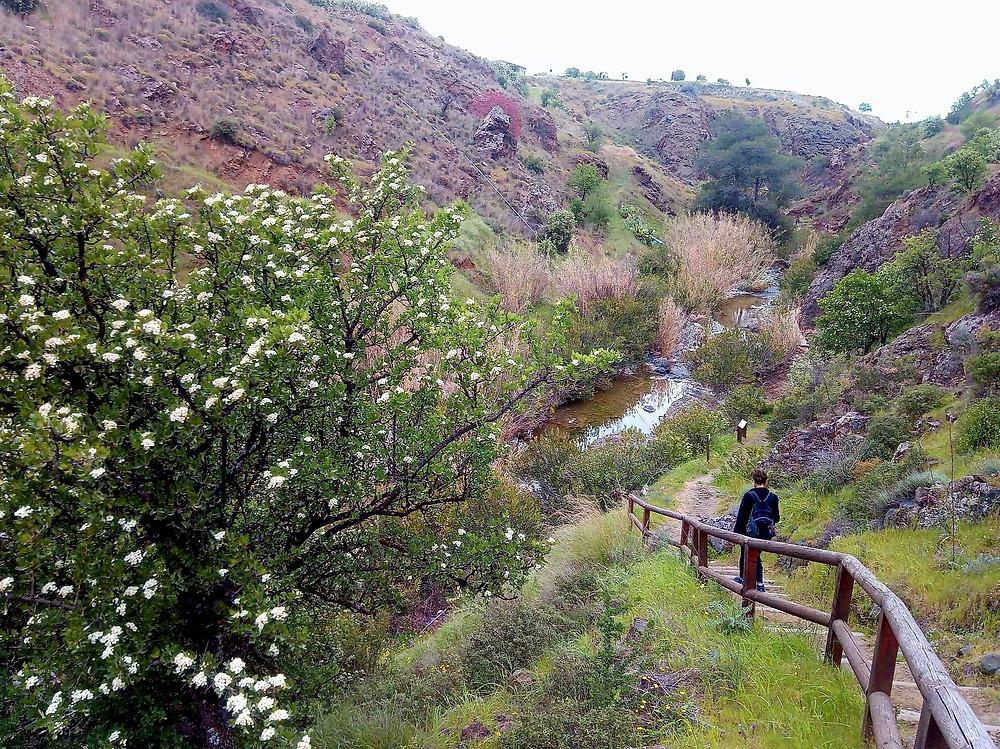 Trail Pikrovrysi tis Merikas