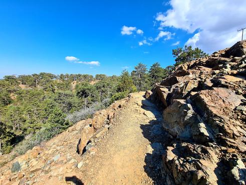 Trail Artemis in Troodos