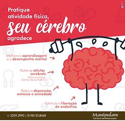 atividade-fisica-e-cerebro.png