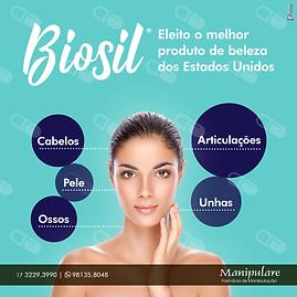 Biosil.png