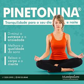 pinetonina.png