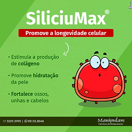 sliciumax.png