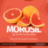 mOROSIL-1.png