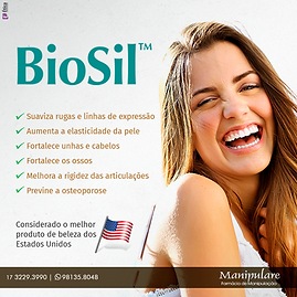 biolsil.png