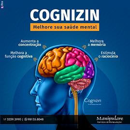 COGNIZIN.png