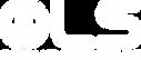 OEM-Logo white.png