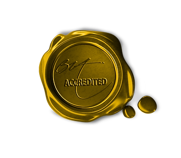 Gold Seal of Approval Logo Transparent.p