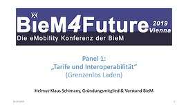 BieM Panel 1.png