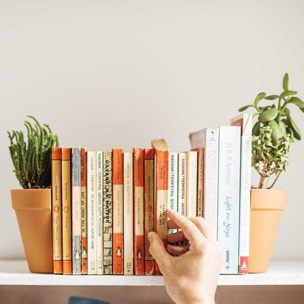 Des serre-livres décoratifs