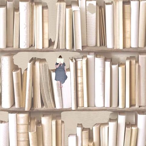 les bookstagrameuses 3