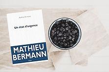 Un État d'urgence, Mathieu Bermann