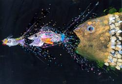 大きな魚と中ぐらいの魚と小さな魚