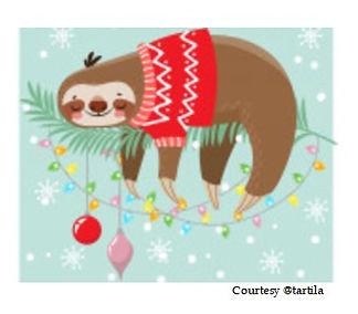 sloth pic.jpg