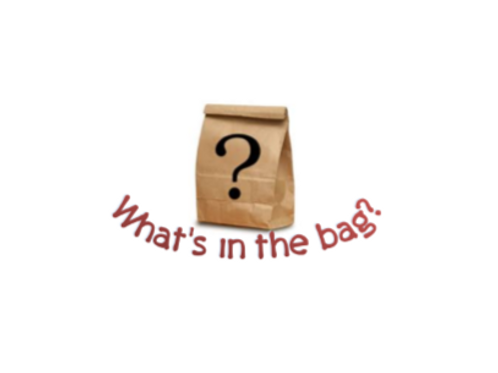 Mystery Craft Bag