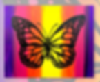 16x20_Butterfly_silhouette.png