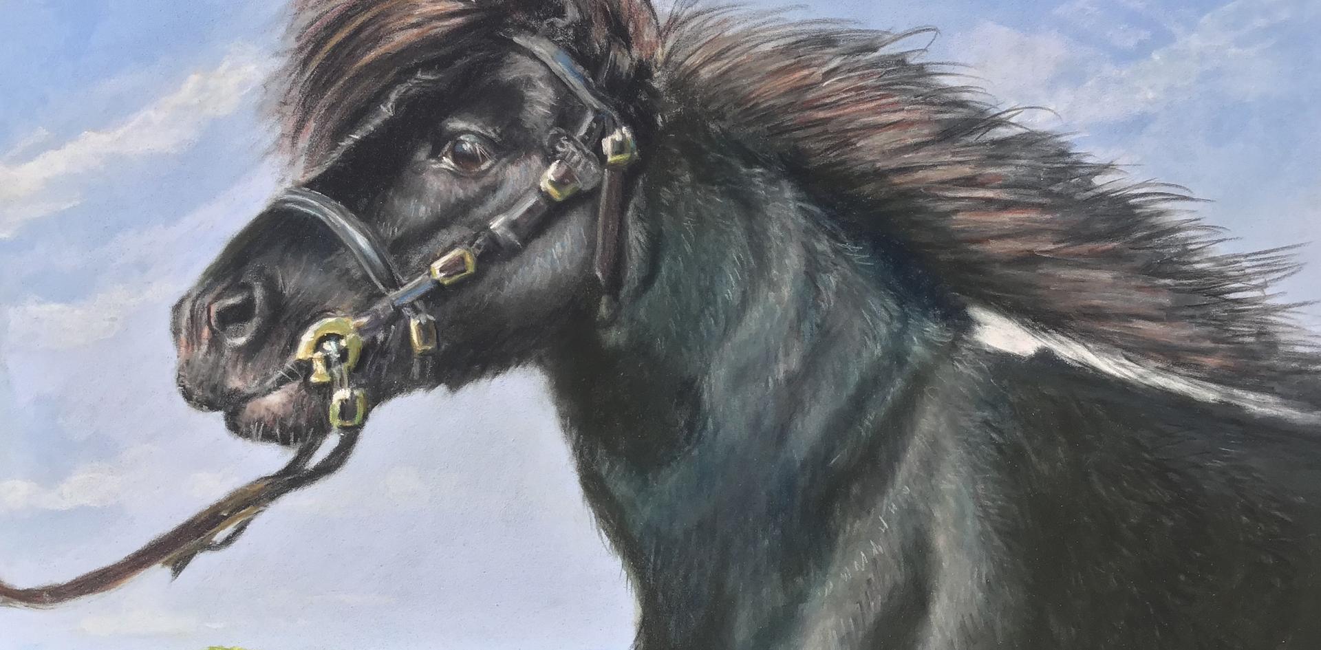 Rosemary's pony