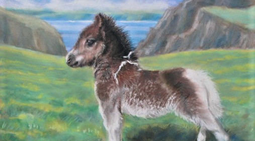 Rosemary's foal