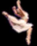 Dancer, Dance Team