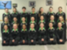 Dance Team, Competition, competitive dance, dancer, dance,
