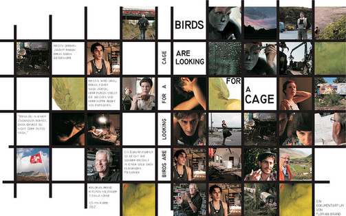 birds_cover.jpg