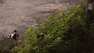 birdslookingforacage03.jpg