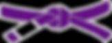 2000px-BJJ_Purple_Belt.png