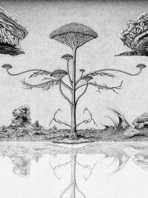 Patience in the Metamorphosis