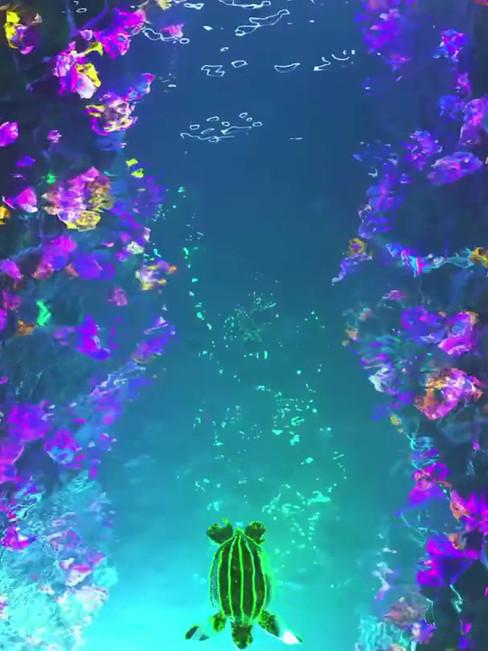 Bioluminescent Turtle 🐢 Day