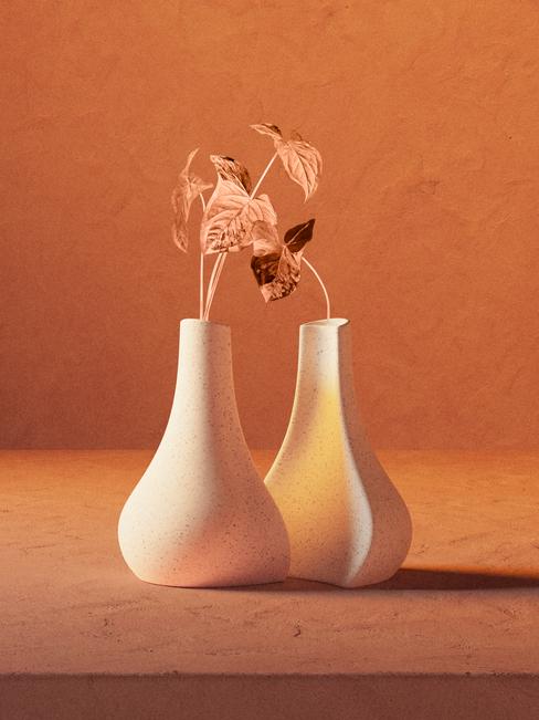Siamese Vases
