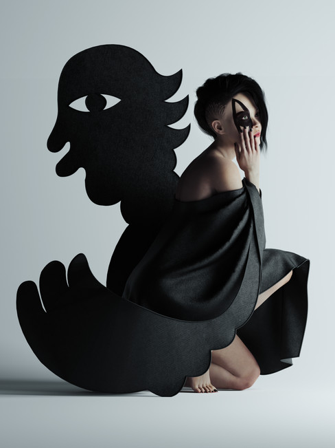 THE BLACK BIRD collaboration Phuc Van Dang