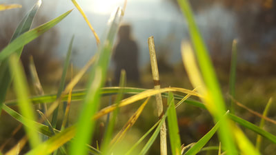 The Lady in the grass